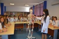 10. Sınıftan Sağlık Kolejlerine Geçiş İçin Nakil Düzenlemesi