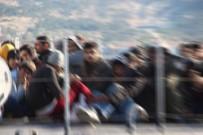 KAÇAK GÖÇMEN - 120 Kaçak Göçmen Yakalandı