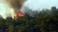 ORMAN YANGINI - Ayvalık'taki Orman Yangını Kontrol Altına Alındı