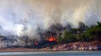ORMAN YANGINI - Ayvalık'taki Orman Yangınında 3 Hektar Orman Zarar Gördü