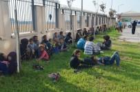 PARMAK İZİ - Hatay'da 80 Kaçak Göçmen Yakalandı