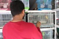 EVCİL HAYVAN - Petshopcular Arasındaki Kopukluk, Sektörü Olumsuz Etkiliyor