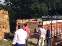 ODUNPAZARI - Büyükçavuşlu'da 'Kaçak' Operasyonu