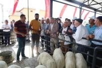 MUSTAFA ELİTAŞ - Büyükşehir'den İncesu'ya Bir Yatırım Daha