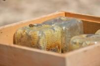 HASTALıK - Kavanozda Ve Kütüğün İçinde Üretilen Ballar Hayrete Düşürüyor