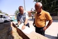 ESKIHISAR - Merkezefendi Belediyesi Zabıta Müdürlüğünden Bayram Öncesi Kaçak Kurban Denetimi