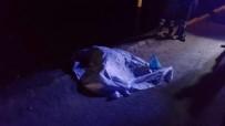 ADLİ TIP KURUMU - Minibüsün Çarptığı Kadın Hayatını Kaybetti