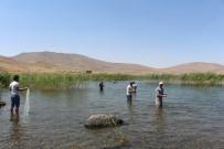 YAKıNCA - Türkiye'nin En Yüksek Rakımlı Gölü Ziyaretçi Akınına Uğruyor