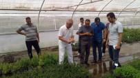 GIDA TAKVİYESİ - Türkiye Tarım Alanındaki Tecrübelerini Ürdün İle Paylaşıyor