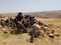 Yakalanan Terörist İtiraf Etti, Güvenlik Kuvvetleri Örgün Mühimmatlarını Buldu