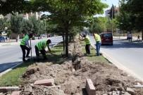 Akşehir'deki Refüjlere Otomatik Sulama Sistemi Hattı