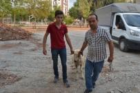 İLÇE MİLLİ EĞİTİM MÜDÜRÜ - Kozan'da Kurban Kesim Kursu Açıldı