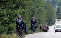 Ormandan Temizlik Ordusu Çıktı