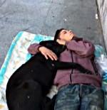 İSTANBUL BEŞİKTAŞ - Beşiktaş'ta Köpeğe Sarılarak Uyuyan Çocuk Yürekleri Burktu
