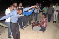 KıNA GECESI - Gaziantep'te Kınalı Kuzular İçin Kına Gecesi