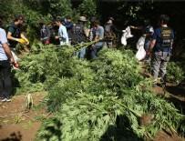 UYUŞTURUCU OPERASYONU - Hevsel Bahçeleri'nde uyuşturucu operasyonu