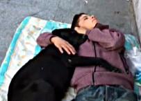 İSTANBUL BEŞİKTAŞ - Köpeğe Sarılarak Uyuyan Çocuk Yürekleri Burktu