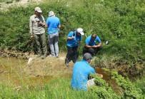 KOCAELI ÜNIVERSITESI - Yeni Nesillere Ekolojik Doğa Anlayışı Aşılanacak