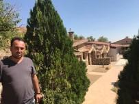 HAYVANAT BAHÇESİ - Köyü Otele Çevirdi