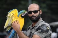 Papağanla Fotoğraf Çekilmek İçin Sıraya Girdiler