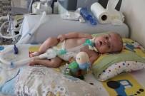 PROFESÖR - 15 Aylık Umut Bebek Yardım Bekliyor