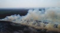 MıSıR - Anız Yangınları Adana'yı Boğuyor