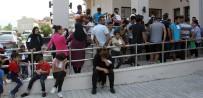 KAÇAK GÖÇMEN - İstanbul'dan Yola Çıkan 103 Kaçak Göçmen Fethiye'de Yakalandı