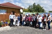 ALıŞVERIŞ - Kırsal Turizmi Geliştirme Projesi Sahası Tanıtılıyor