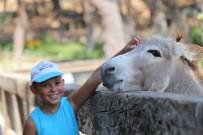 Lösemi Hastası Çocuklar Hafta Sonu Etkinliğinde Bir Araya Geldi