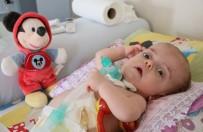 PROFESÖR - 15 Aylık Umut Bebeğin Yaşam Savaşı