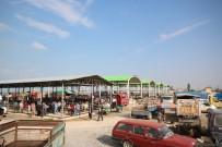 HAYVAN PAZARI - Beyşehir'de Hayvan Pazarında Hazırlıklar Tamamlandı