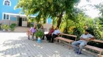ALI ÖZTÜRK - Cami Bahçesi Botanik Bahçesine Döndü