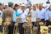 FATIH KıZıLTOPRAK - Ergene'de Tarla Günü Düzenlendi