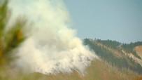 GÜRCİSTAN BAŞBAKANI - Gürcistan'daki yangın büyüyor