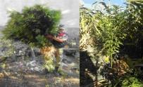 METAMFETAMİN - Kahramanmaraş'ta Uyuşturucu Operasyonu