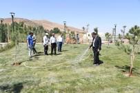AHMET CENGIZ - Karni Deresinde Yeşillendirme Çalışması