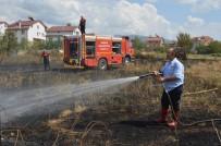 ANIZ YANGINI - Niksar'da Anız Yangını