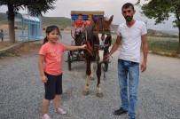 FAYTON - Simav'da Çocukların Fayton Sefası