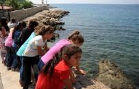 EYFEL KULESI - Şırnaklı Çocuklar İlk Defa Denizi Gördü