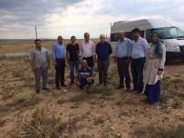 MEHMET ÇETIN - Aslanapa'da Hayvancılığın Geliştirilmesi Projesi