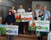 TARıM - Korkuteli'nde Kadın Çiftçiler Yarıştı