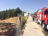 ANIZ YANGINI - Anız Yangını Tütünlere Ve Ağaçlara Zarar Verdi