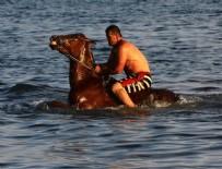 YARIŞ ATI - Atları Van Gölü'nde yarışlara hazırlıyorlar