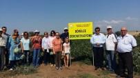 İSMAIL KAYA - Çanakkale'de 'Tarla Günü'