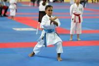 BUZ PATENİ - Erzurum'da Karate Şöleni Başladı