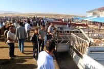 AHMET BULUT - Hayvan Pazarında Alıcı Da Satıcı Da Memnun Değil