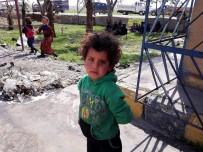 ULUSLARARASI AF ÖRGÜTÜ - UAÖ Açıklaması Rakka'daki Siviller Büyük Tehdit Altında