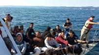 YALıKAVAK - 450 Göçmen Ve 4 Göçmen Kaçakçısı Yakalandı