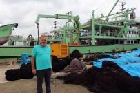 ALI KAYA - Balıkçılar Bu Sezon Hamsiden Umutlu
