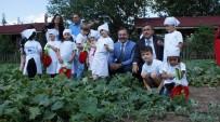 TURGAY BAŞYAYLA - Başkan Acehan Kadın Ve Çocuklarla Salatalık Topladı Turşu Kurdu
